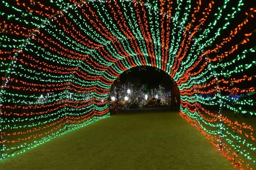12-13 Tunnel of Lights TLD WildLights