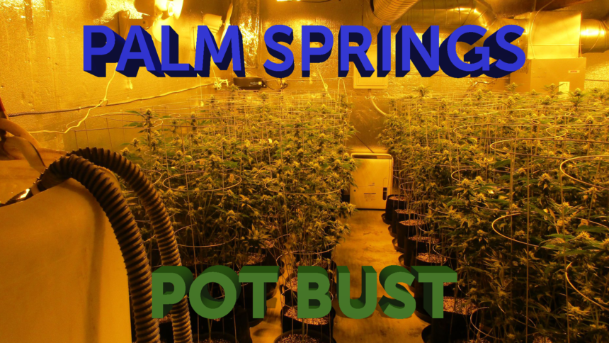 12-9-PALM-SPRINGS-POT-BUST-GFX