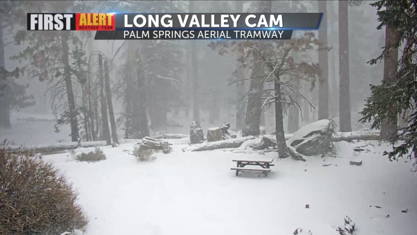 View from the Palm Springs Aerial Tramway