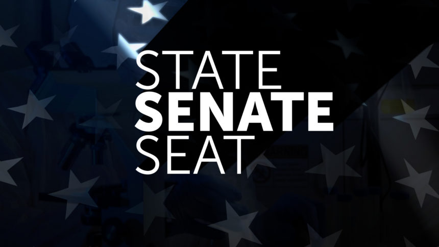 STATE SENATE SEAT MONITOR WALL AND FULL SCREEN