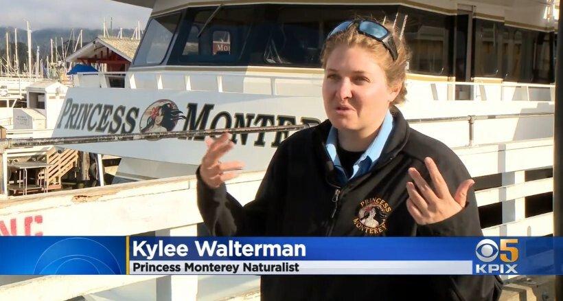 <i>KPIX</i><br/>Naturalist Kylee Walterman's
