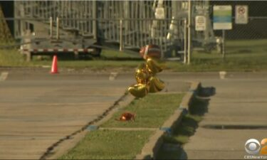 Balloons and flowers mark the spot where Quraan Smith