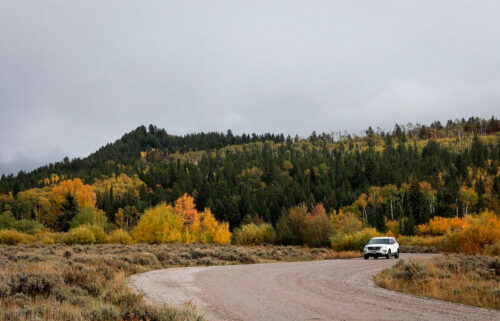 A vehicle drives in the Bridger-Teton National Forest